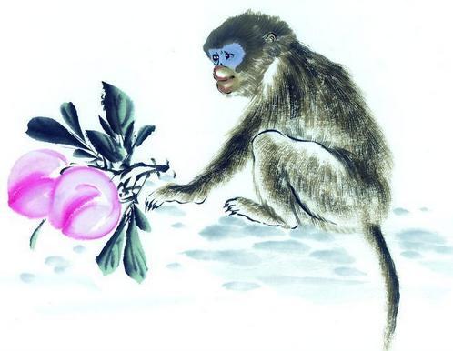 属猴人2019年的全年运势分析