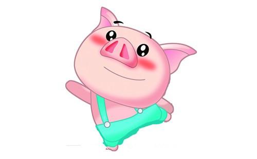 属猪的人2019年运程