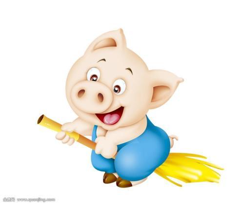 2019年几月出生的猪宝命运最好
