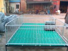 生产销售保育床高培保育栏质量保证 福宇养猪设备有限公司