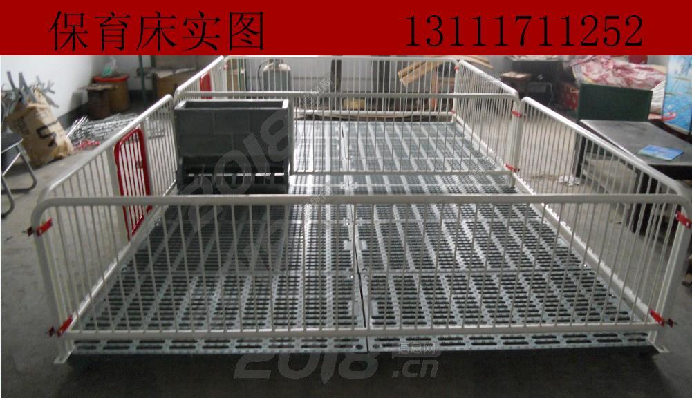 福临养猪设备专业生产保育床高培保育栏