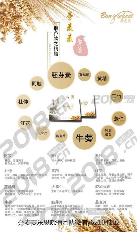 江西萍乡新型养生食品蒡麦麦 蒡麦麦江西萍乡怎么代理哪里有卖