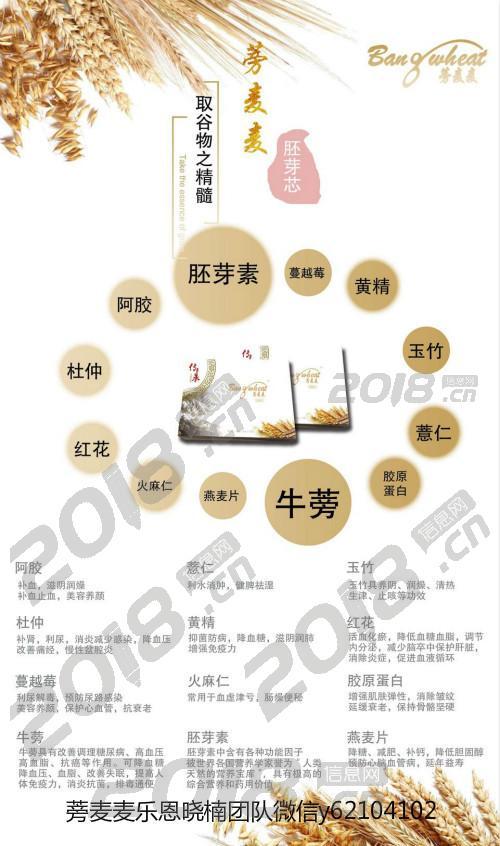 广东河源健康食疗产品蒡麦麦 蒡麦麦广东河源怎么代理哪里有卖