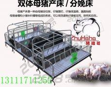 双体分娩床节省空间便于管理福宇养猪设备有限公司