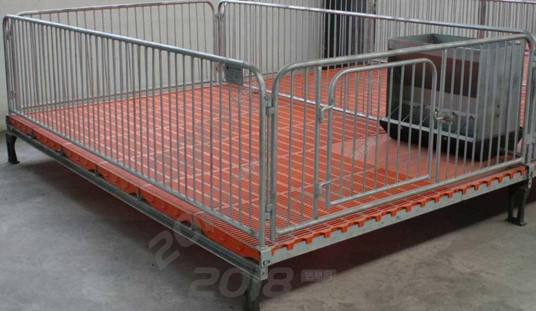 亿嘉销售小猪保育床仔猪保育栏养猪设备母猪产床母猪定位栏