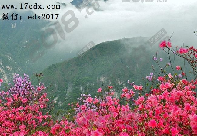 武汉周边春游去英山大别山主峰景区看映山口碑评价怎么样