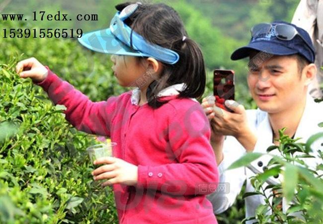 武汉周边亲子游去英山童玩谷生态园游玩口碑怎么样