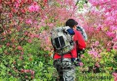 武汉周边游四月份去天马寨赏杜鹃花口碑评价怎么样
