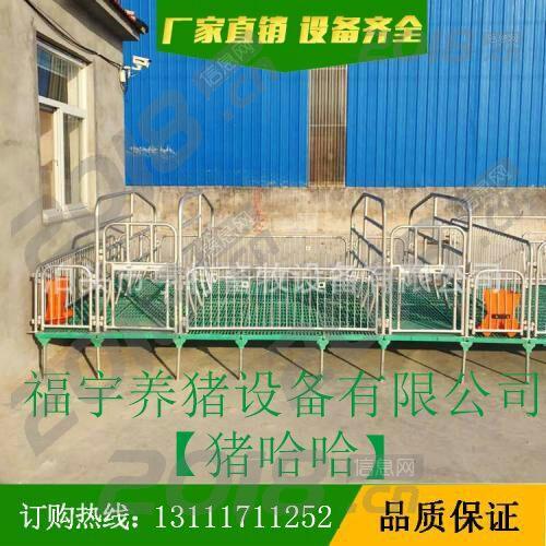 福宇长期供应母猪 产床各种猪用设备