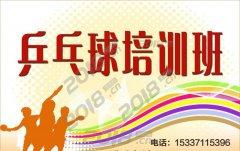 江汉区青年路范湖附近乒乓球培训中心,手把手教学