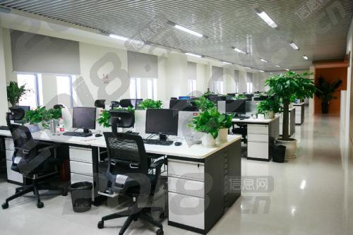 柬埔寨招聘电脑客服