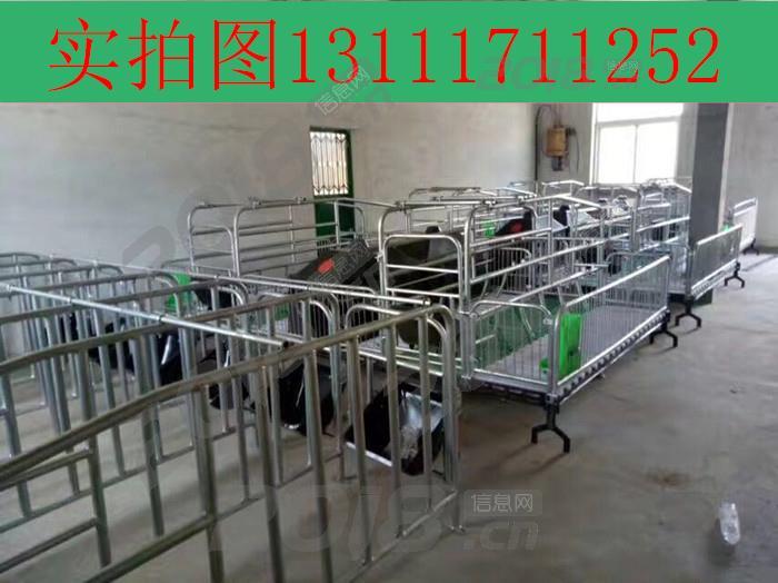 母猪产床生产厂家福宇养猪设备专业生产