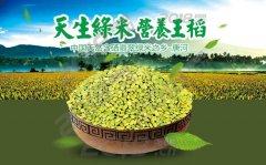 香汤丸御茶 2000元 香汤丸绿米 大汉稻米 翡翠绿米