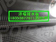 天津1.5公分2公分3公分车库排水板(蓄排水板)
