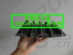 安庆卷材排水板@厂家专业生产amp;车库绿化排水板