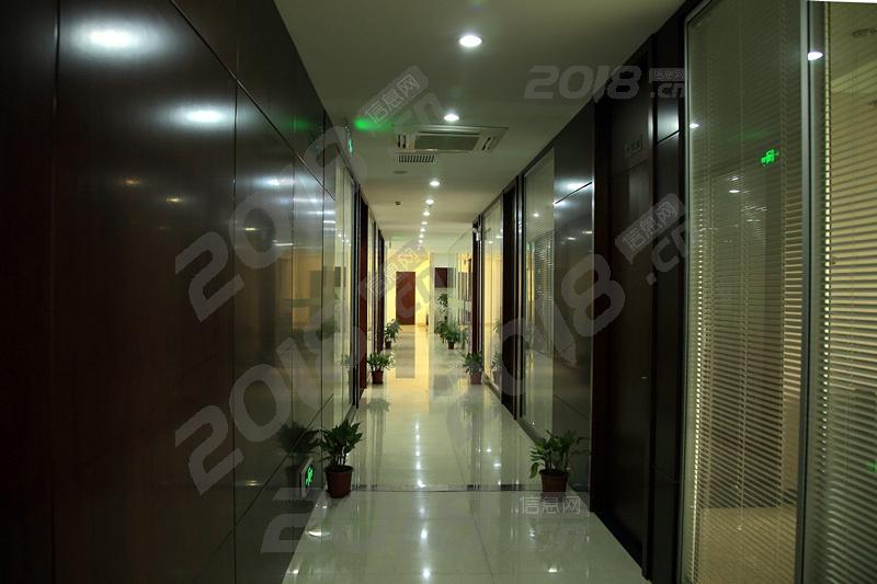 松江洞泾工业区办公室交通便利环境优美待出租