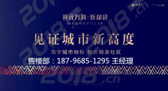 海宁市中心开元万科新都会,精装修手房首付30万起
