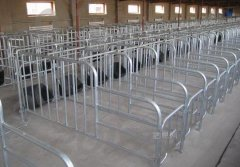 新型养猪设备生产厂家限位栏出厂价格