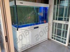 铝合金水族箱 养龙专用水族箱