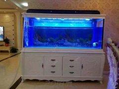 欧式鱼缸 鑫德龙鱼缸定做 简欧鱼缸