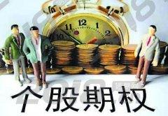 个股期权新型投资模式高杠杆包教运营?