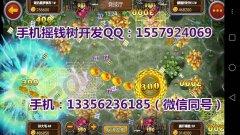 南京H5微信小程序开发,H5捕鱼游戏开发