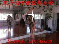 成都双流1元体验钢管舞课程 亮泽舞蹈培训