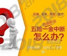 专业人事代理个人公司南京五险金代补缴 户口档案挂靠