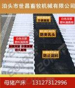 双体母猪产床规格分娩母猪产子栏厂家供应价格超低