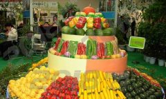 2019越南国际新型肥料及农业机械展
