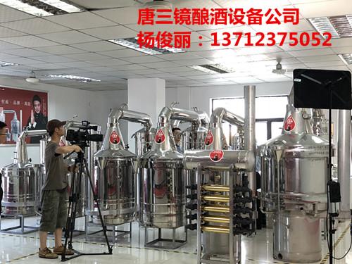 广东东莞唐三镜杨俊丽酿酒设备的价格