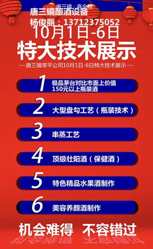广东佛山唐三镜真全粮酿酒技术的厂家