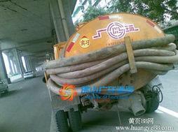 宁波江北区专业清理化粪池 抽粪 清理隔油池