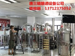 广东东莞唐三镜一套中小型酿酒设备